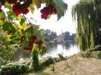 Blick auf Park Babelsberg
